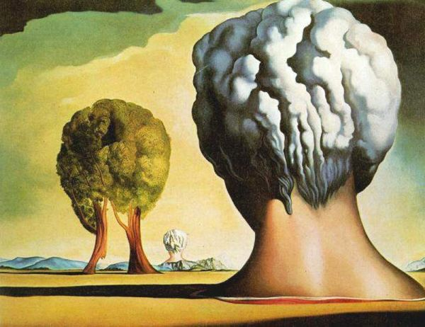 salvador-dali-biography-amp-painting-viuzza-art-space-1346550720_b